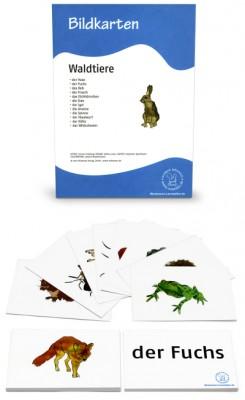 12 Bildkarten Waldtiere